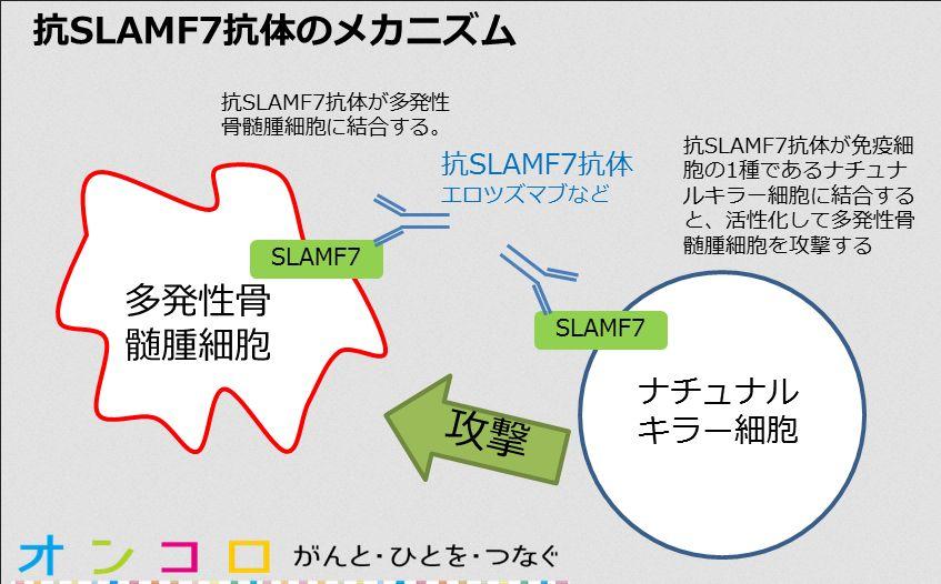 Aslamf7